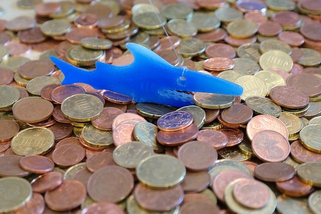 ryba na mincích
